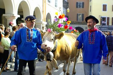 Return from the alpine pastures (Annecy) - October 10th 2015